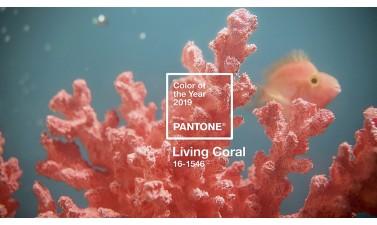 """Цветът на 2019 година е в нюанс """"жив корал"""""""